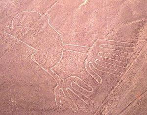 Sobrevuelo líneas de Nazca + Islas Ballestas